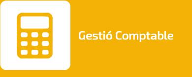 serveis gestió comptable a Vila-real